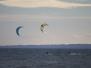 Seneca Kites 11.6.13